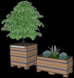 un projet pour MAINtenant - arbres en pot